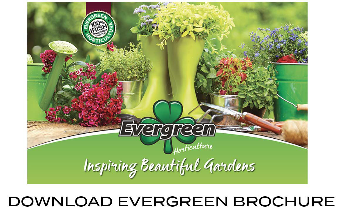 Download Evergreen/Greendays Brochure