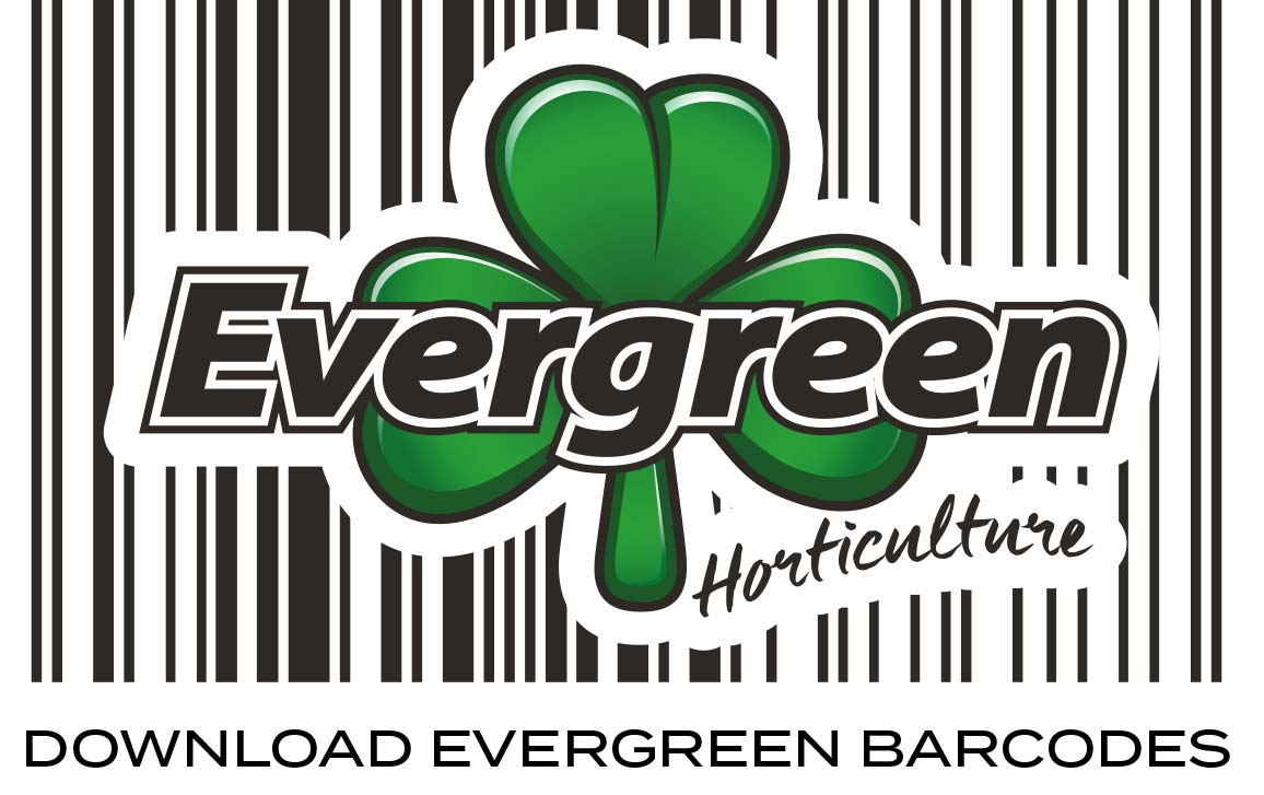download_evergreen_barcodes